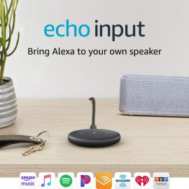 Amazon Alexa Echo Input for Any Speaker 107067