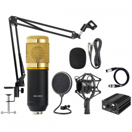 BM800 Condenser Microphone Combo Offer (Studio Setup) 1007089